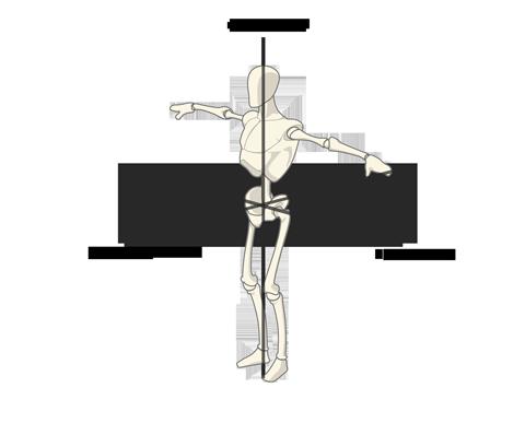 Les axes anatomiques de référence