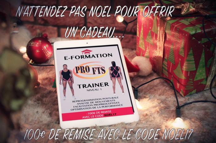 E Trainer PRO FTS Christmas Ipad